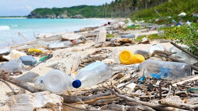 海に漂う「プラスチックごみ」の深刻すぎる影響