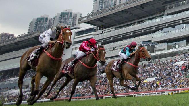 断言!「香港の競馬は世界でいちばん面白い」