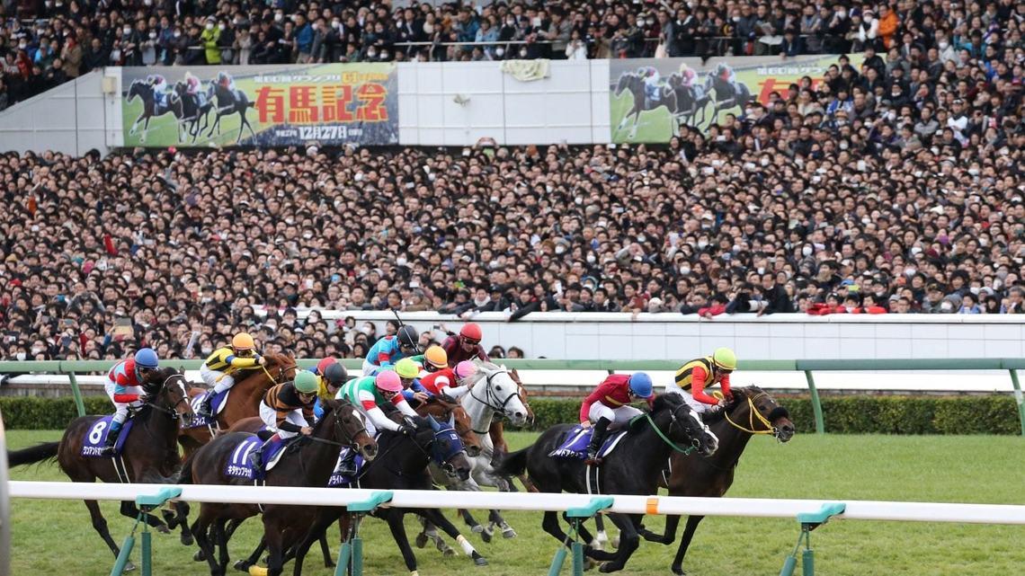 大波乱になる?有馬記念と2017年を予想する | 競馬好きエコノミストの ...