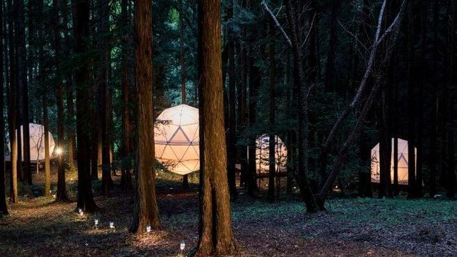 沼津市の「泊まれる公園」は何がスゴイのか