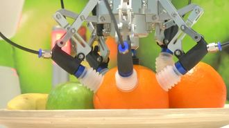 This Robot Can Tell Which Fruit Is Ready For Picking