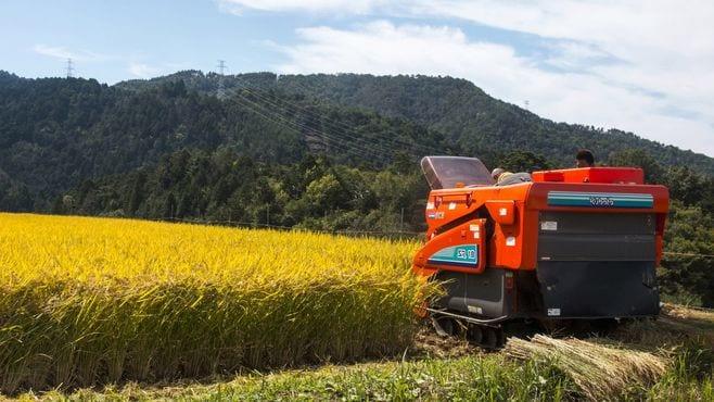 「儲からない」農業企業が絶対気づかない視点