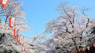 上野と丸の内、2つの音楽祭は何がスゴいのか