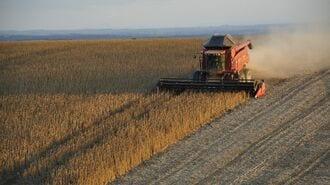 ブラジル産の大豆を中国が「爆買い」する理由