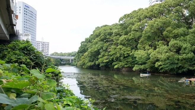 「弁慶濠」と「高速道路」が同居する風景