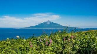 北海道「花の島」礼文島の短い夏を路線バスで巡る