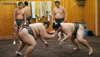 Watch a Sumo Wrestling Practice and Meet the Stable Cats