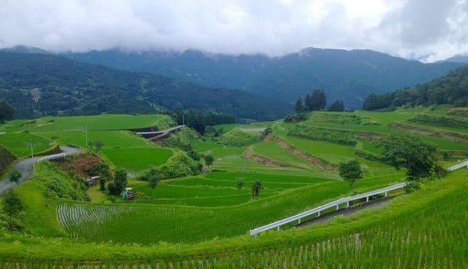 年30組が移住する、高知県の町の秘密
