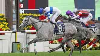 感染者ゼロ!「香港の国際競馬」のすごい防疫態勢