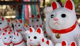 Tokyo's 12 Secret Attractions