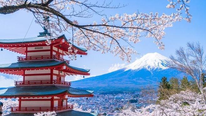 「日本スゴイ番組」にドイツから見える違和感