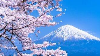 """桜の花が一斉に咲き始める""""意外すぎる""""理由"""