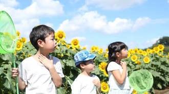 """""""夏の宿題地獄""""を楽々クリアする「7つの手」"""