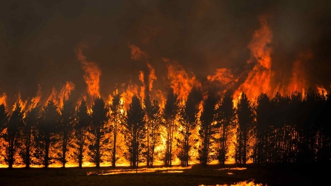 オーストラリア火災で「誤報」流すメディアの愚
