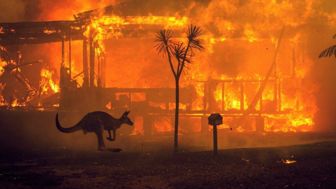 オーストラリア火災」がここまで悪化した理由 | The New York Times ...