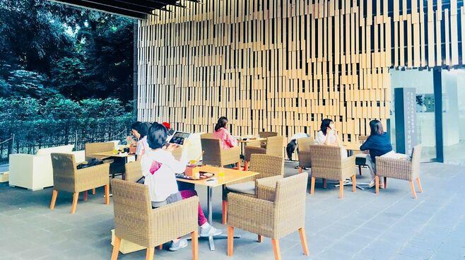 金持ち中国人が抱く「日本の観光業」への本音