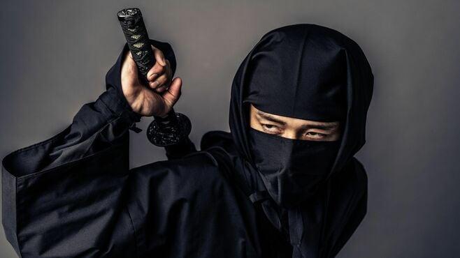 現代にも役立つ「戦国の忍び」諜報活動の奥義