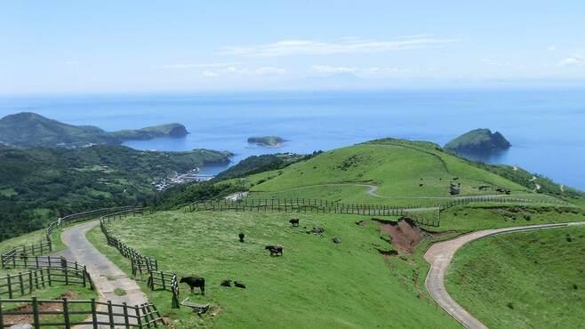 島根県の「小さな島」が3年連続で人口増の裏側