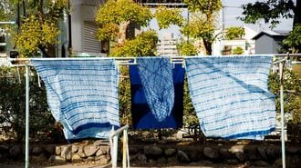 The Beginner's Guide to Traditional Indigo Dyeing