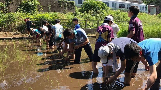 東大合格率No.1の筑駒は水田で生徒を育てる