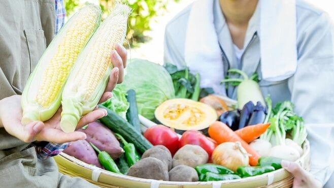 日本の有機農業がいま一つ広がらない構造要因