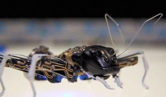 アリ型ロボットが未来の工場の主役に?