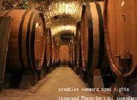 ワインの近代化 その1 その背景:科学の発展《ワイン片手に経営論》第10回
