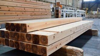 ウッドショック、住宅木材価格「平時の4倍」の激震