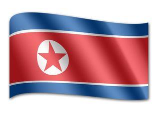 Who is North Korea's So Tae Ha?