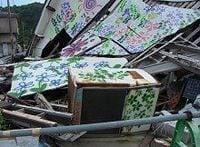 地域復旧や子どもへのメンタルケアに取り組む福島・久ノ浜町、花の絵で町並みに明るさも