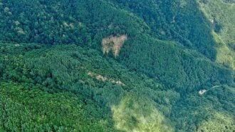 「日航機墜落現場」36年ぶりに訪れて空から見た今