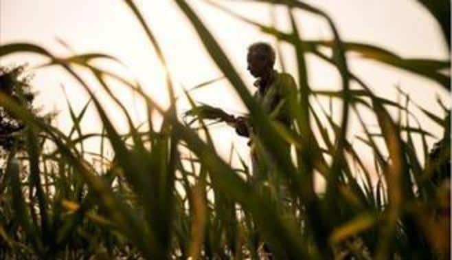 農家の生き様をネットで伝える男たち