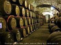 第20回 ワイン造りの時代の転換点に立って