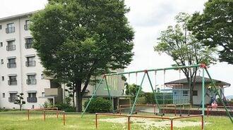 学生80人超が住む「愛知県のある団地」の仕掛け