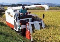 米価急落で不満が噴出! 戸別所得補償の矛盾