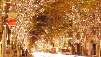 Where to Enjoy Christmas Illuminations in Tokyo