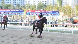 韓国馬が地元G1で日本馬にボロ負けする理由