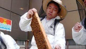 銀座育ちのミツバチが運ぶコミュニティ