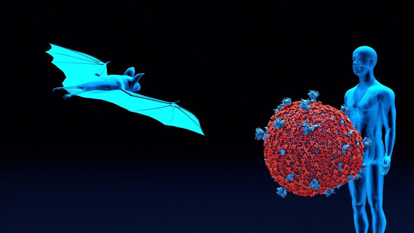 ウィルス の コロナ 由来 名前 新型コロナウイルスの症状は、かくして「COVID