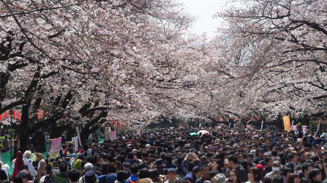 上野 公園 イベント