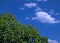 """《MRI環境講座》第1回 地球温暖化が問いかける""""環境問題""""の意味"""