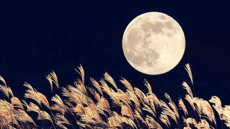 前澤社長も愛する「月」を英語で楽しむヒント