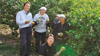 自動でレモン栽培、「広島流デジタル化」の勝算