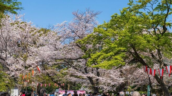新型コロナの日本経済への影響ととるべき政策
