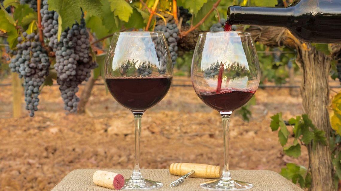 英語で言いたい!ワインを堪能するフレーズ | 実践!伝わる ...
