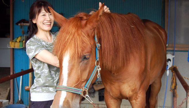 「馬との接し方」で、あなたの課題が分かる