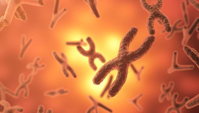 遺伝子情報から「個人の運命」は断定できない