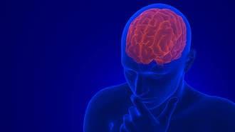 「脳」の真実をどれだけ知っていますか
