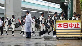 日本高野連「クラファン」で財政難を抜け出せぬ訳