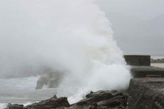 Typhoon brings heavy rain, edges closer to Japanese heartland